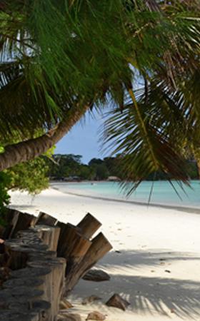Vacances-Seychelles